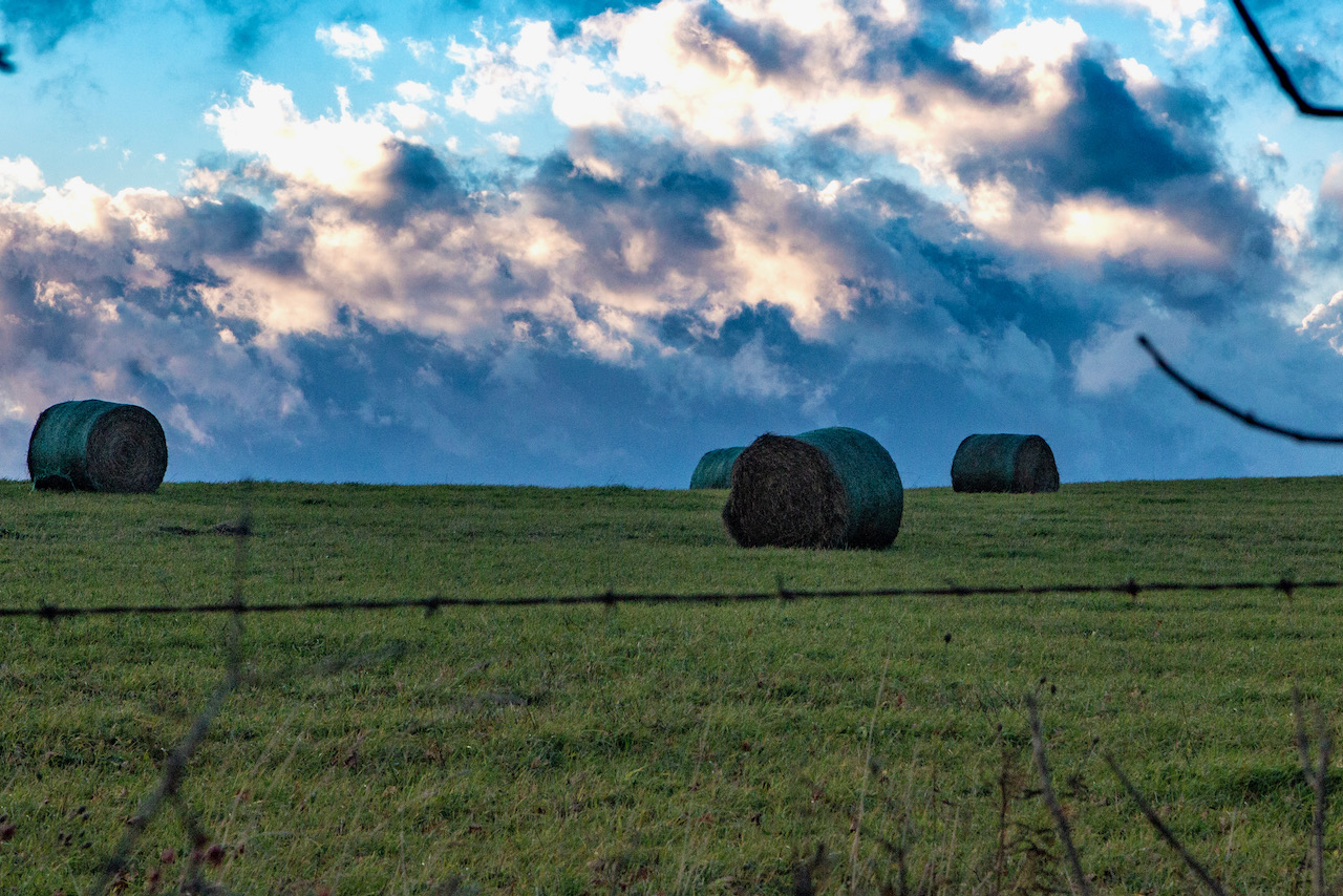 Round Bales and Sky